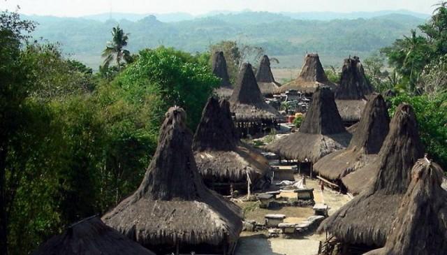 Desa Adat Tarung Unik Berada di Sumba